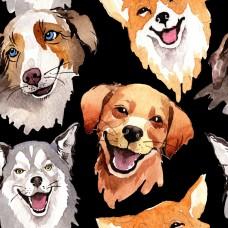 Собаки на черном фоне