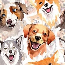"""Коллаж """"собаки"""""""