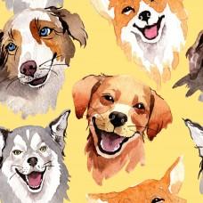 Собаки, светлый фон