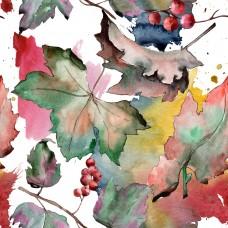 Листья и ягоды смородины 2